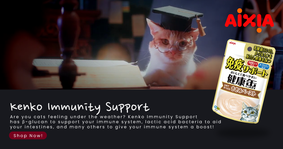 Community & Strays Our Singapore Kitties Need Our Love Too