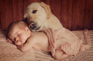 Quality Pup Time With the Family: Dog & Infant